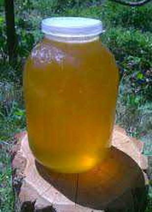 Мед/Мёд