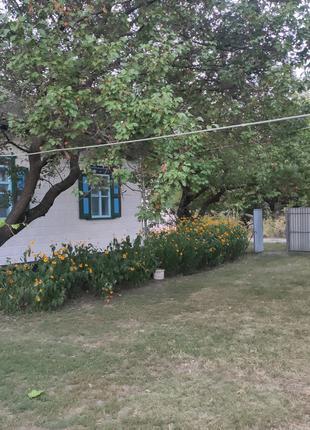 Продам дом с.Ташань,Киевская область