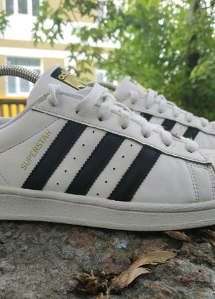 Кроссовки мужские adidas originals superstar