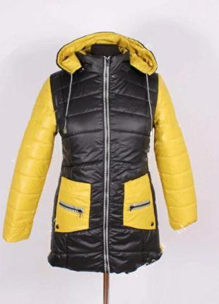 Крутая женская куртка весна/осень