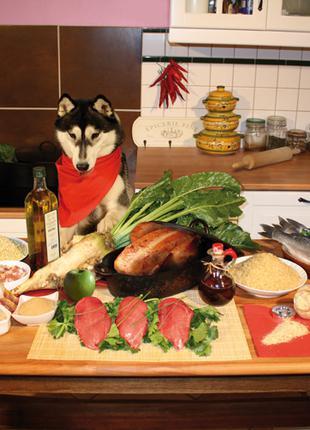 Корм для собак Natyka