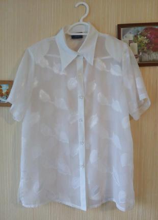 Нежная стильная белая шифоновая блуза с принтов лист