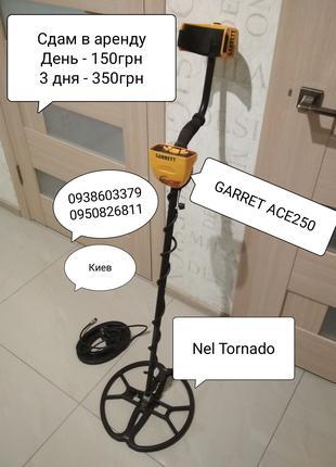 Garret ACE250 Металошукач металоискатель оренда прокат