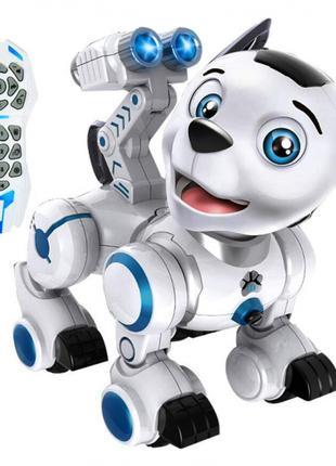 Радиоуправляемая интерактивная собака робот Wow!Dog K10