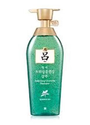Шампунь для жирных волос RYO ( Корея)