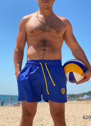 Мужские пляжные короткие шорты плавательные электрик ferrari