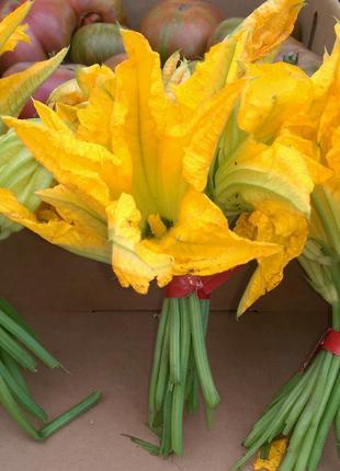 Цветы цуккини 10 шт в упаковке
