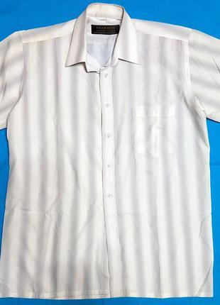 Рубашка мужская -  белого цвета с широкими полосками