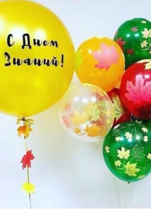 Набор латексных шаров «С Днём Знаний»