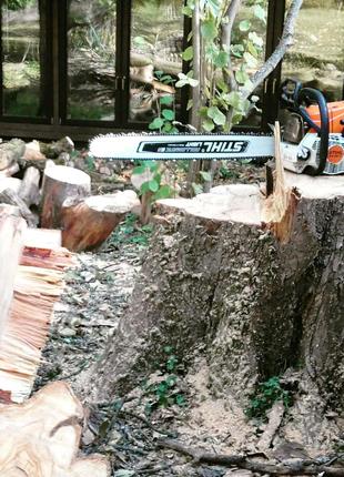 Спилить деревья Очистка участка Благоустройство расчистка выкорче