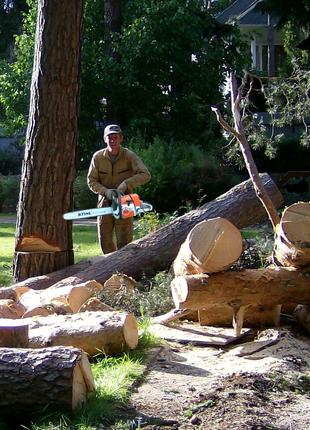 Спилить деревья Выкорчевать Удалить Обрезать Очистка участка