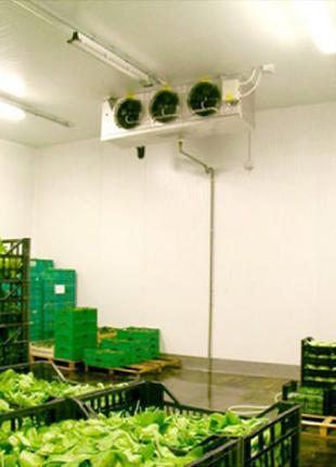 Холодильное оборудование для овощных складов