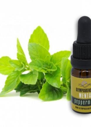 Эфирное масло перечной мяты 100% ( Essential oil Peppermint )