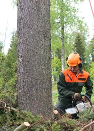 Очистка участка уборка территории спилить дерева выкорчевать расч