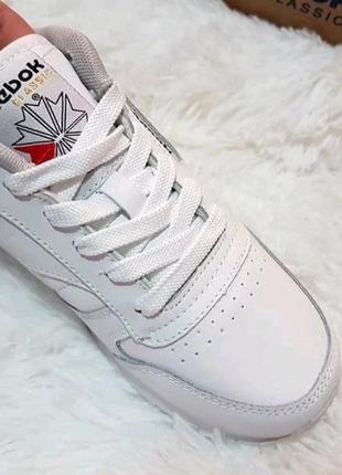 Кросівки кроссовки Reebok
