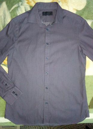 Рубашка мужская длинный рукав хлопок Slim Fit