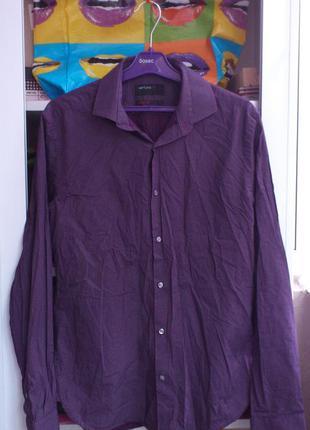 Рубашка мужская в горошек хлопковая с длинным рукавом ventuno ...