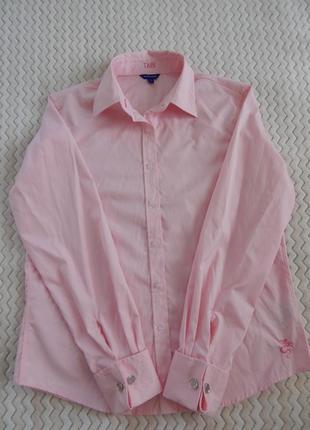 Рубашка блузка блуза сорочка