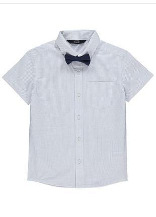 Хлопковая рубашка с бабочкой george