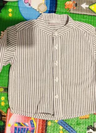 Рубашка воротник стойка 86