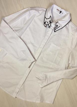 Базовая белая рубашка стильний воротник с котиком