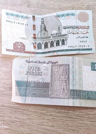 Египетские деньги 5