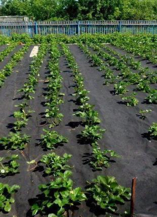 Агроволокно Черное, черно-белое мульчирующее ширина 1м-3м