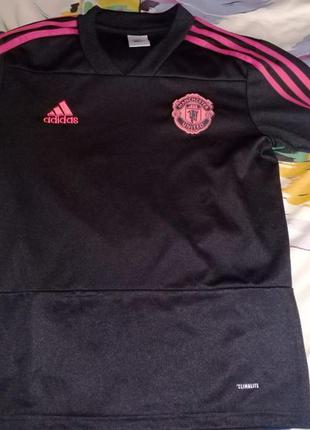Футболка-джемпер adidas fc manchester united