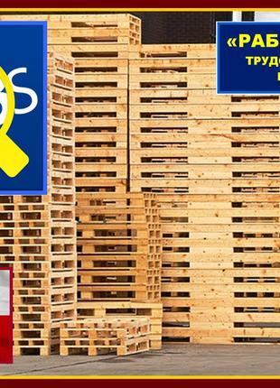 Работа для мужчин на ремонт евро–поддонов, с оплатой до 2000 Евро