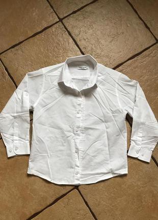 Paulo Carvelli рубашка для мальчика 7-9 лет