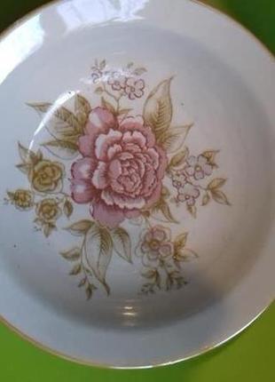 Суповые глубокие тарелки набор 10 шт. Цветы. Пионы.