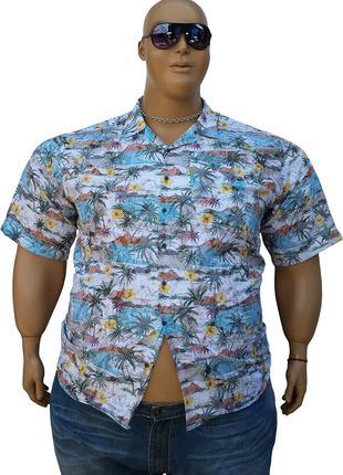 Гавайская мужская рубашка большого размера.