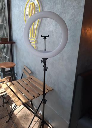 Кольцевая лампа 45см со штативом 2 метра (ZB-F348 )