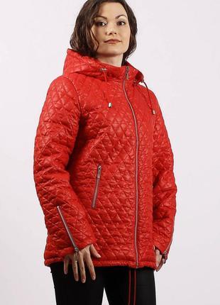 Женская демисезонная куртка большой размер осень весну красная