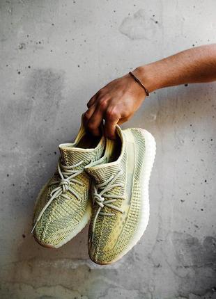 Четкие кроссовки 💪 yeezy boost 350 v2 antlia💪
