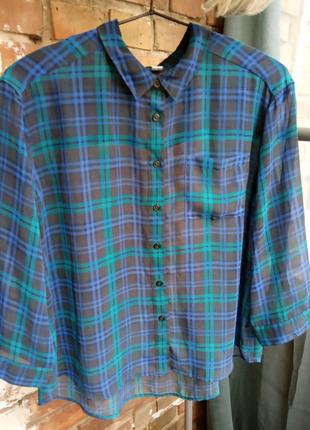 Красивая блуза UNIQLO оверсайз
