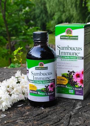 Nature´s Answer, Sambucus Immune, черная бузина с эхинацеей и аст