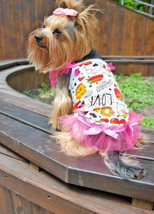 Майка для собак одежда для собак