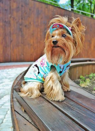 Майка для собак , одежда для собак