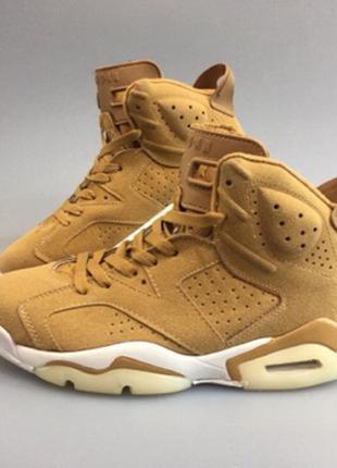Баскетбольные кроссовки Nike Air Jordan v6