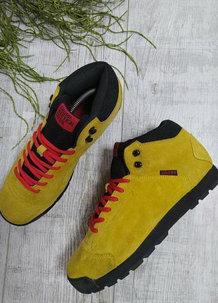 Ботинки демисезон польша