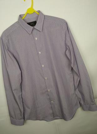 Мужская фиолетовая рубашка в полоску next