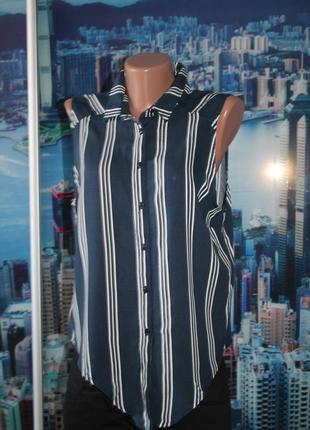 Блуза полоски