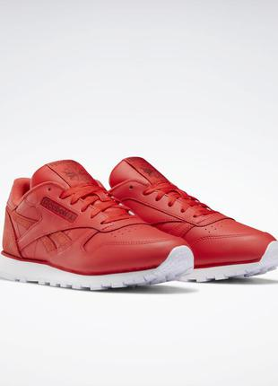 Кроссовки reebok classic leather ef3255