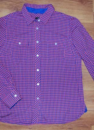 Рубашка, в клеточку, с длинным рукавом