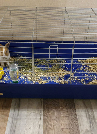 Клетка для кролика, грызуна
