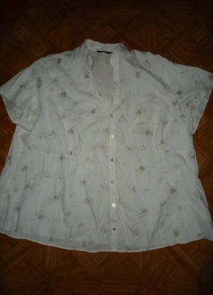 Блуза р 54-56
