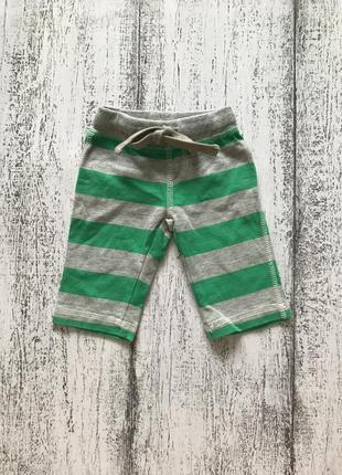 Крутые штаны спортивные брюки в полоску hema 0-3мес