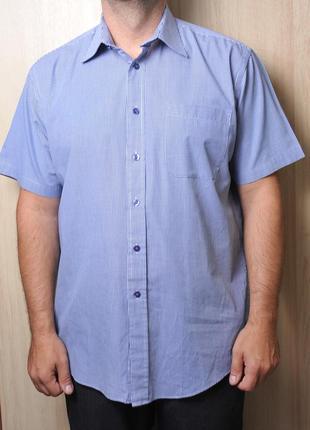 Рубашка taylor & wright