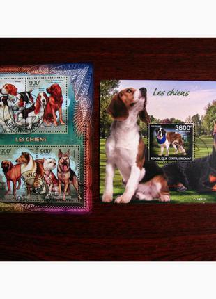 Красивые марки фауна Собаки